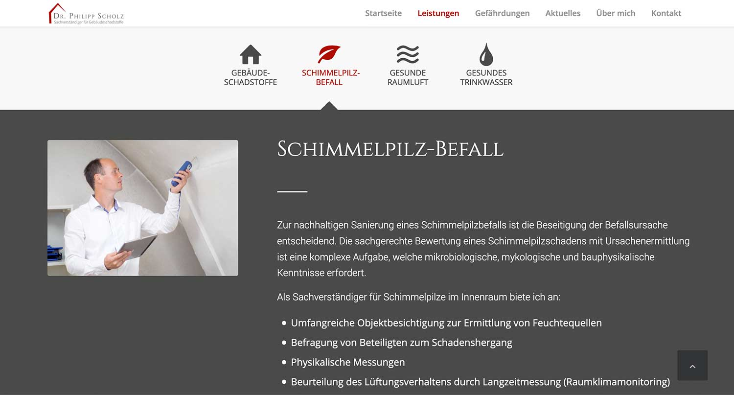 Website erstellen Wordpress