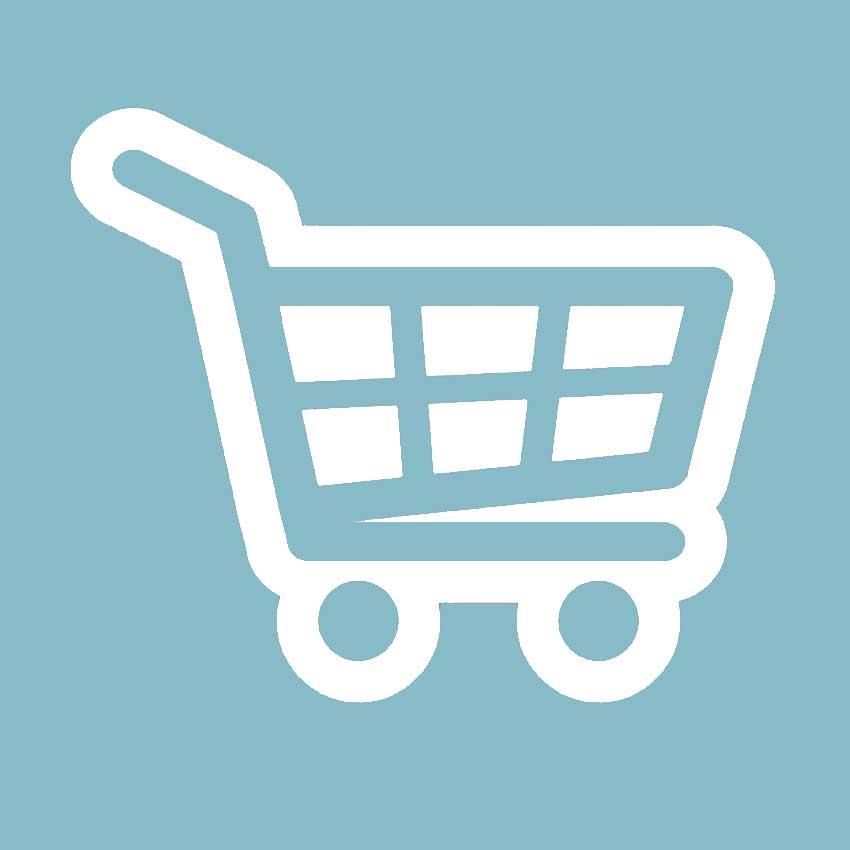 Online Shop erstellen Allgäu